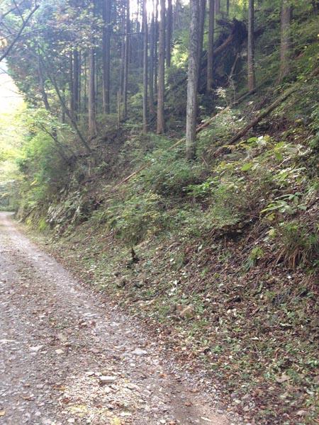 kosaka gate012