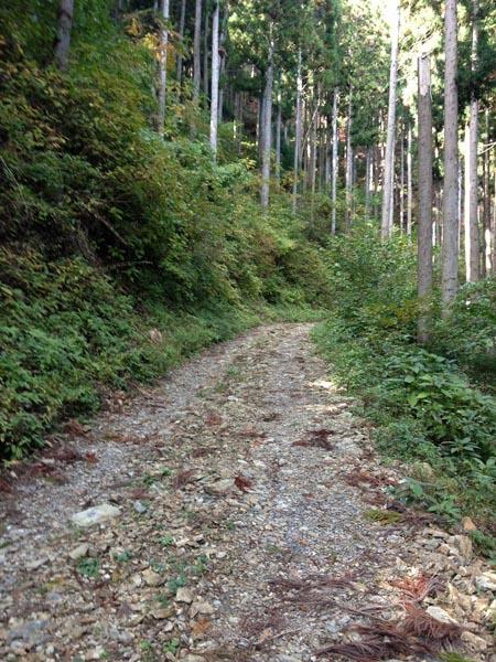 kosaka bunki2011