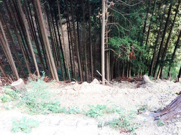 kosaka bunki2026
