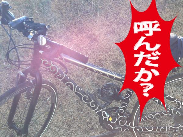 hamurakou002.jpg