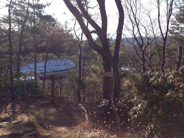 hamurazen019.jpg