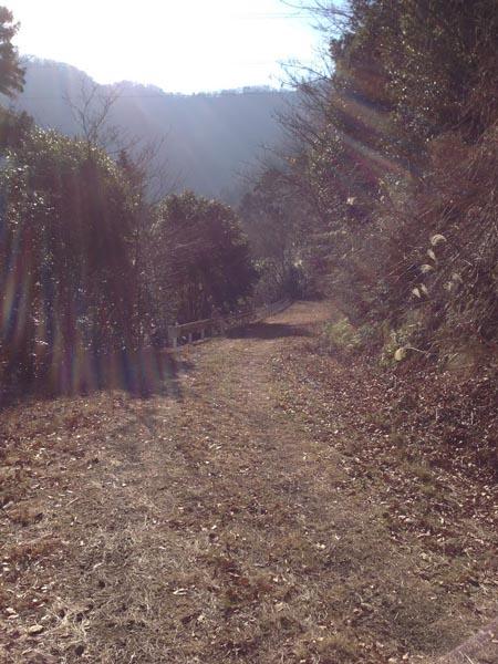 hannbaraosawa019.jpg