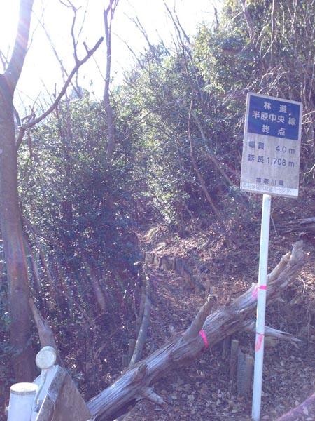 hannbaraosawa020.jpg