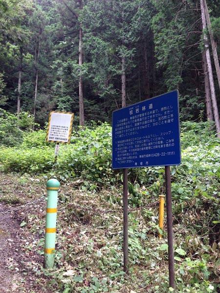 hinokiiwa001.jpg