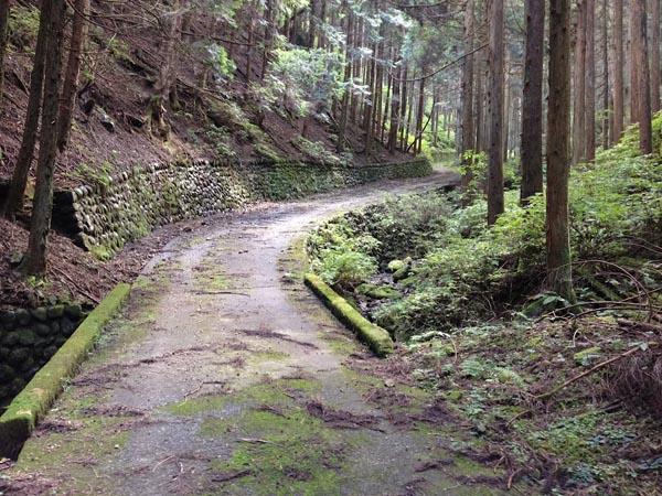 hinokiiwa008.jpg