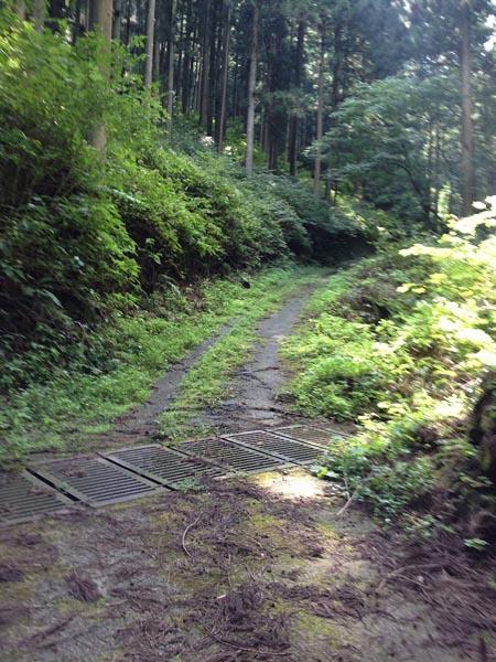hinokiiwa015.jpg