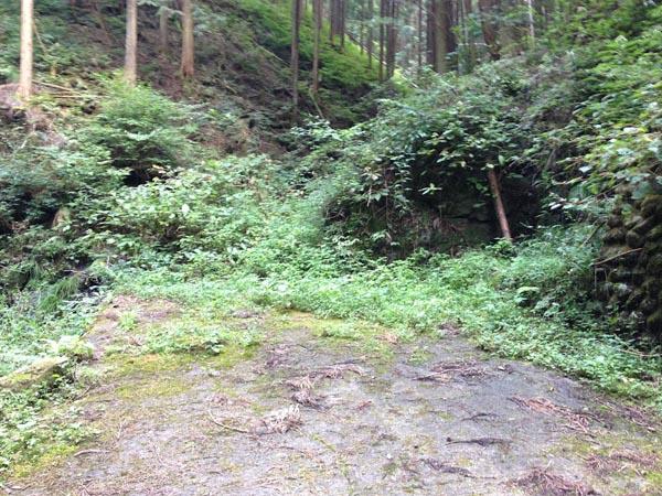 hinokiiwa025.jpg