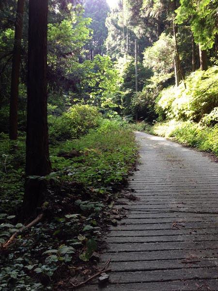 honodeyama017.jpg