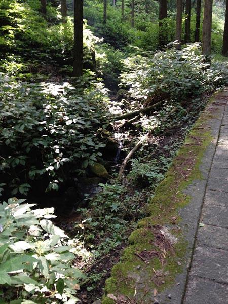 honodeyama021.jpg