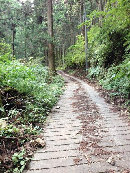 honodeyama024.jpg