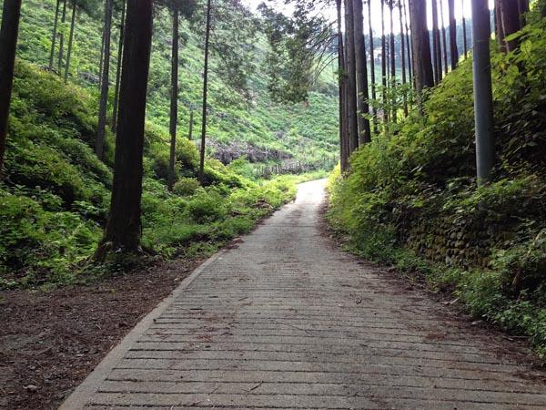 honodeyama025.jpg