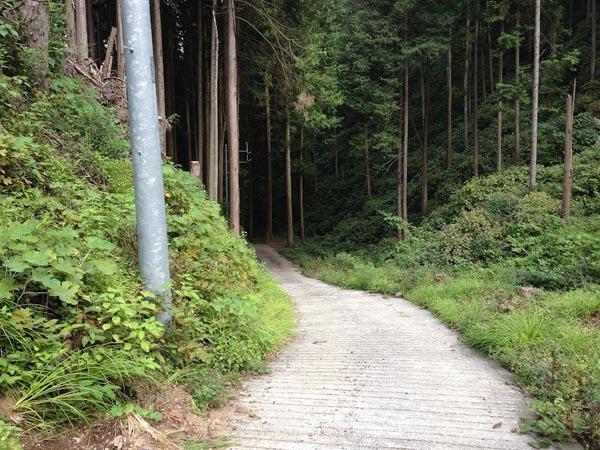 honodeyama027.jpg