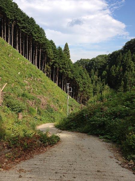 honodeyama032.jpg
