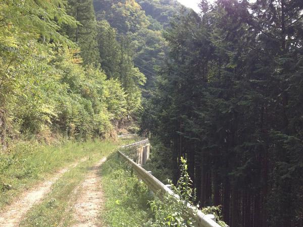idotochi014.jpg