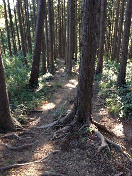 ishigamizigoku043.jpg