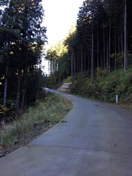 koshizawa003.jpg