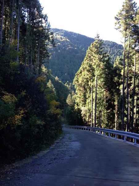 koshizawa004.jpg