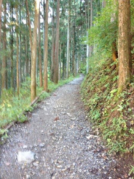 koshizawa016.jpg
