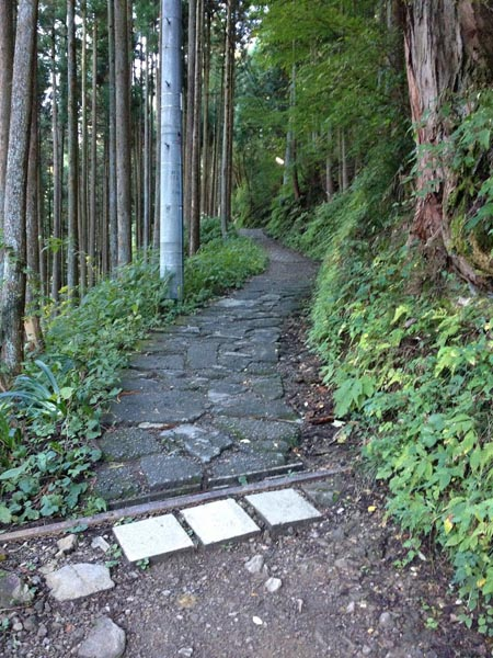 koshizawa018.jpg