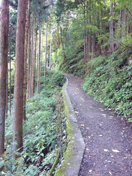 koshizawa019.jpg