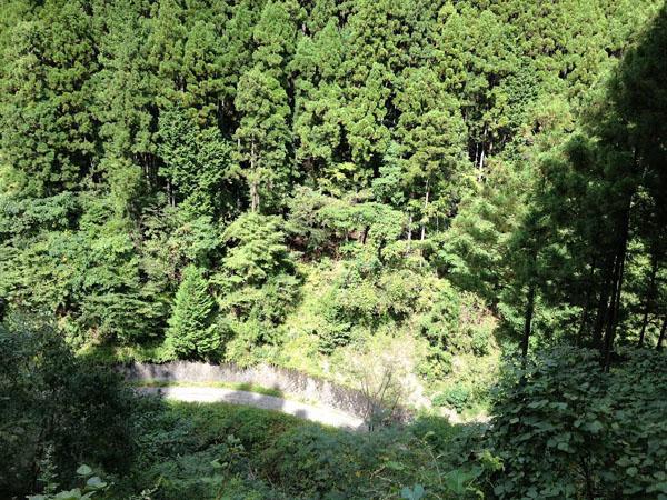manaigekitou003.jpg