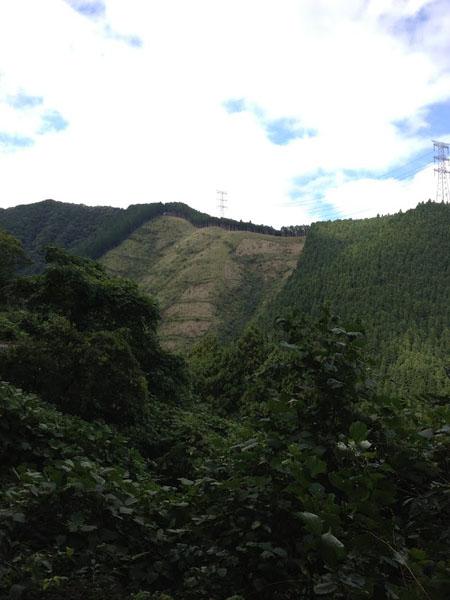 manaigekitou017.jpg