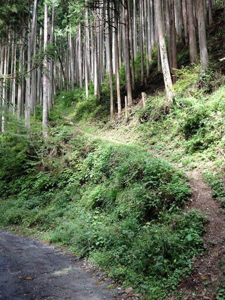 manaisawa003.jpg