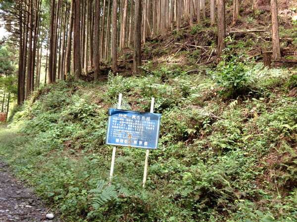 manaisawa021.jpg