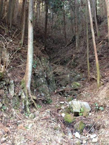 mitsuzawa014.jpg