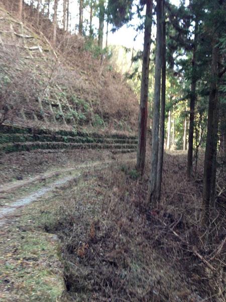 mitsuzawa015.jpg