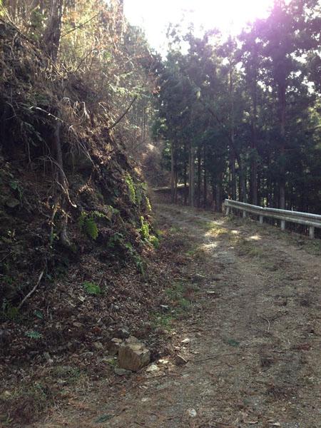 mitsuzawa020.jpg