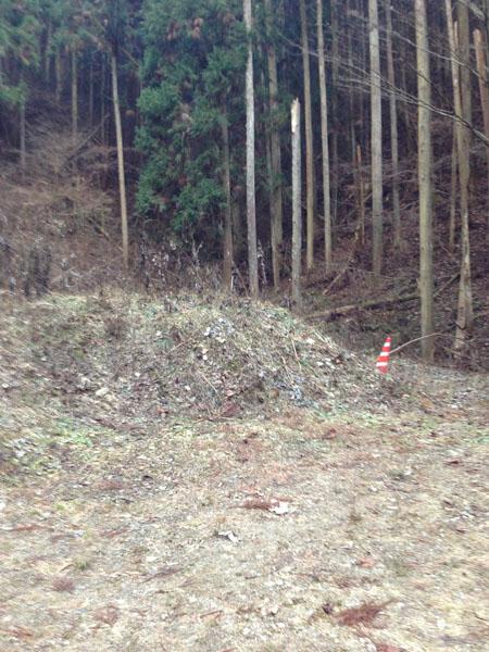 mitsuzawa025.jpg