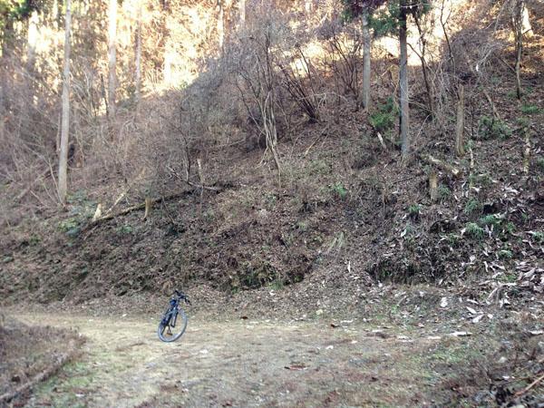 mitsuzawa027.jpg