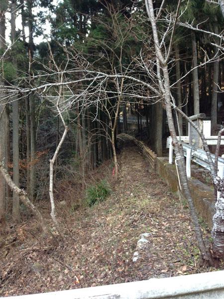 mitsuzawa034.jpg