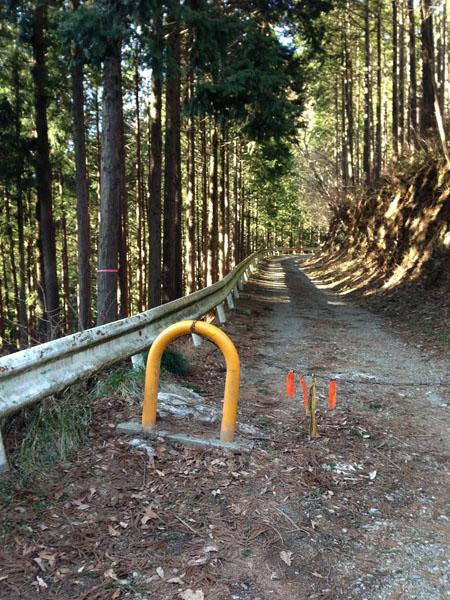 mitsuzawa036.jpg