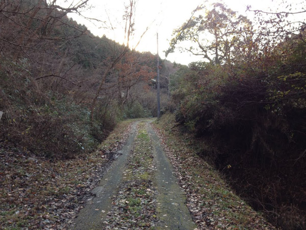 nakazawa005.jpg