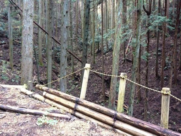nakazawa020.jpg