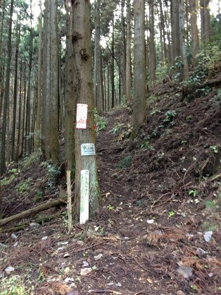 nakazawa021.jpg