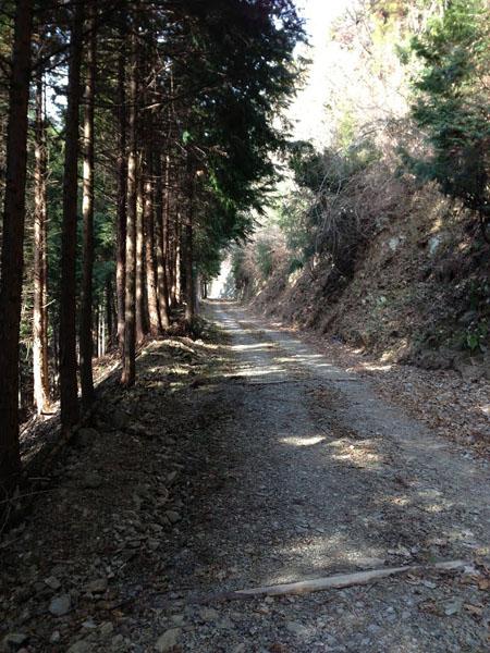 ninikusawa011.jpg