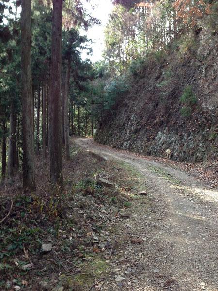 ninikusawa019.jpg