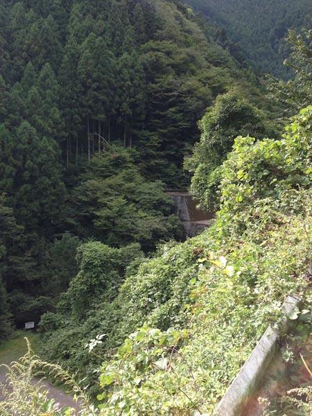 nishikawa015.jpg
