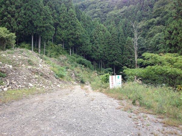 nishikawa025.jpg