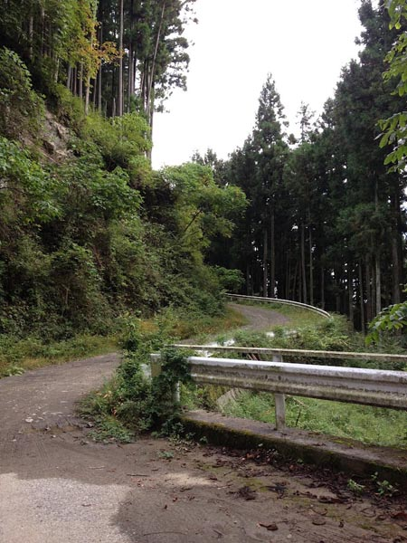 nishikawa028.jpg