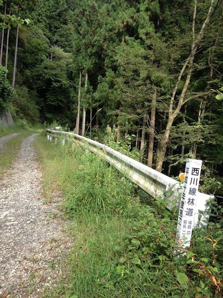 nishikawa029.jpg
