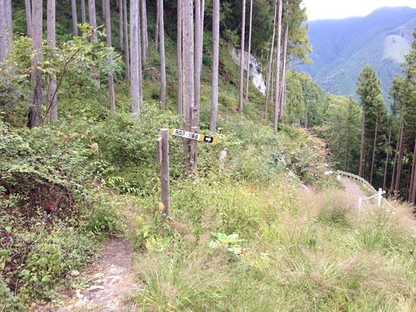 nishikawa034.jpg