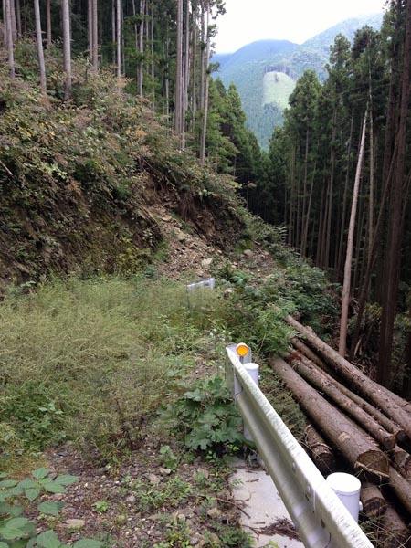 nishikawa040.jpg