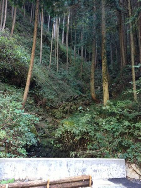 numazawa015.jpg