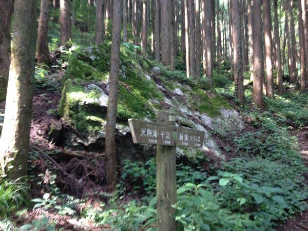 tengu029.jpg