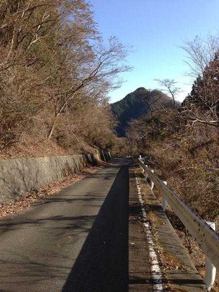 tougatake031.jpg