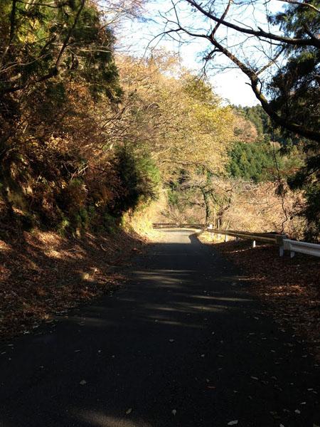 tougatake033.jpg